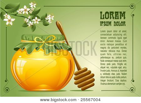 Honey with a wooden stick and flowers. Vector.