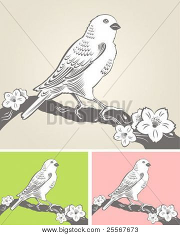 Elegant spring background with a hand drawn bird on a blooming tree branch