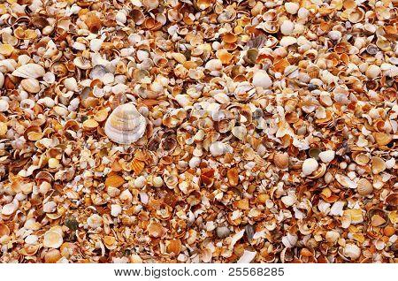 Wet sand texture background