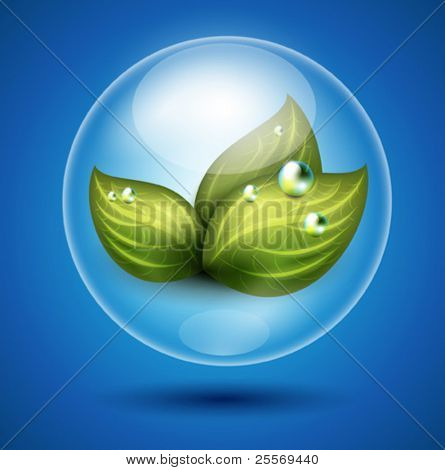 Vector eco illustration of green leaves under glossy sphere protection
