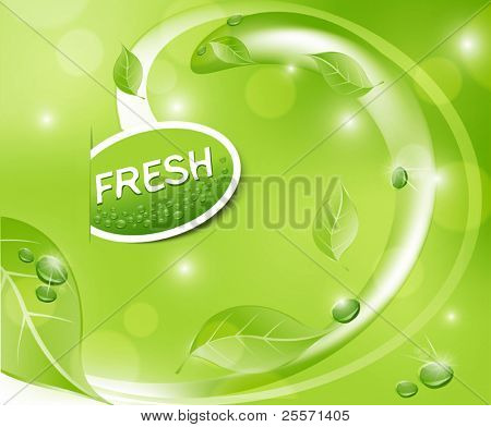 Vector green fresh background with leaves and drops