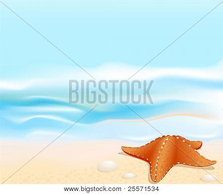 Vector Marine landscape with a sea star (starfish), beach, sea and rocks