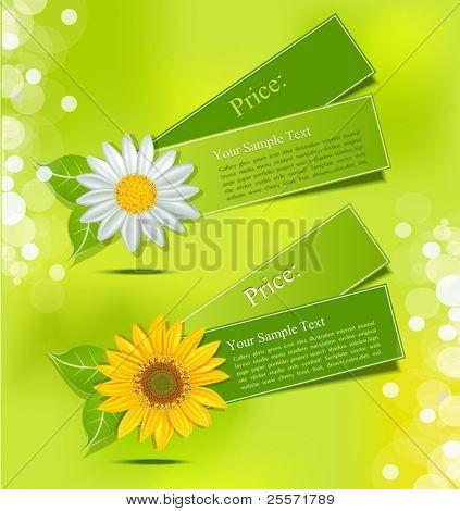 rótulo de vetor frondosa com margaridas e girassóis, sobre um fundo verde exuberante