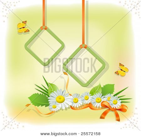 colorful background with two frames, daisies and butterflies