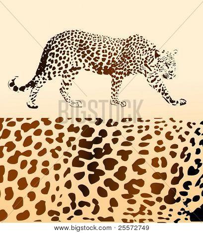 Hintergrund von leopard
