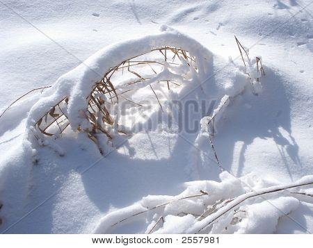Fantastic Snow Arch On A Dry Grass