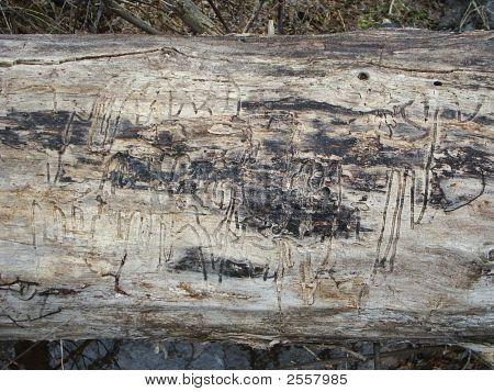Hieroglyphic Verschlüsselung