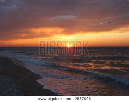 Sea Sunset