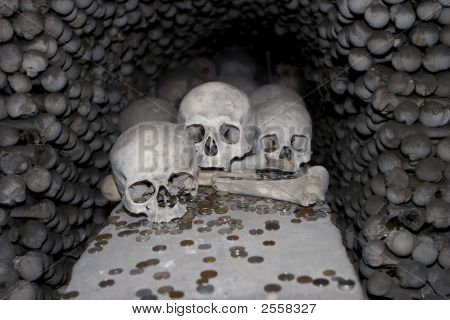 Three Skulls And Coins