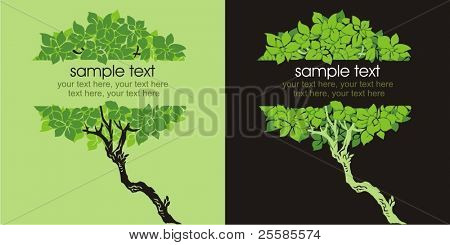 Two variants of cards design with trees and text