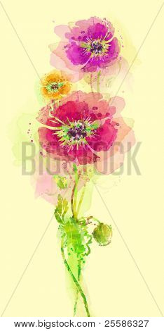 Painted watercolor poppies