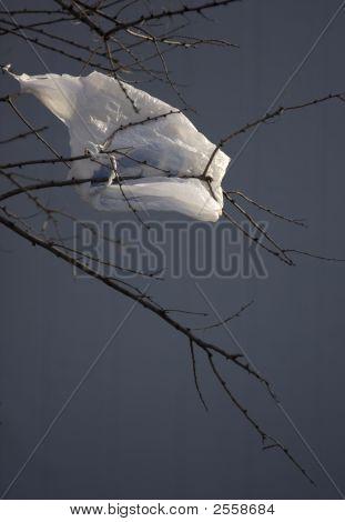 Environmental Pollution - Plastic Shopping Bag On A Tree