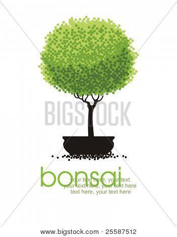 vector stylized bonsai