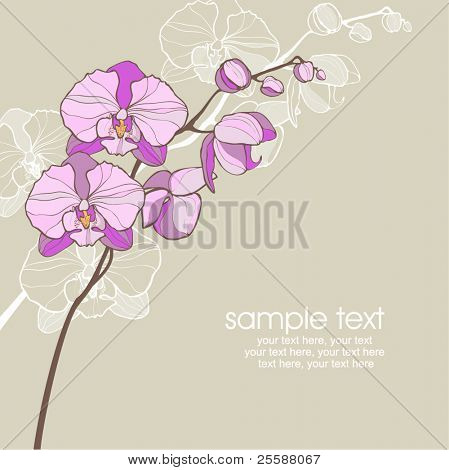 card with vector stylized pink orchid