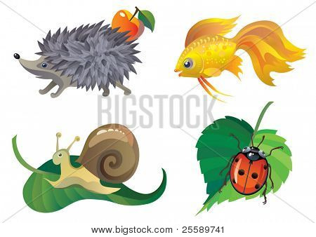 Stylised animals: ladybird, gold fish, hedgehog, snail
