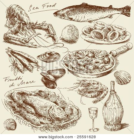hand drawn sea food