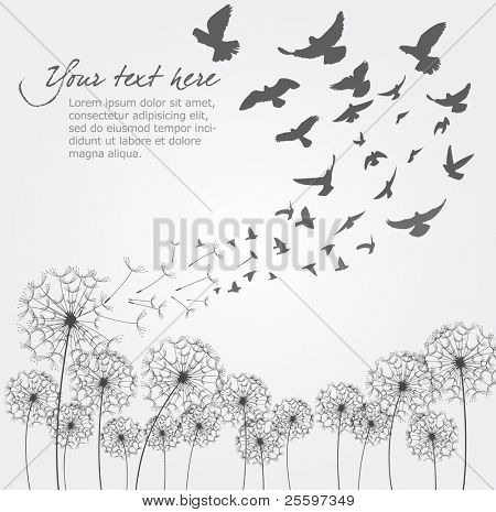 Vector Dandelion With Birds