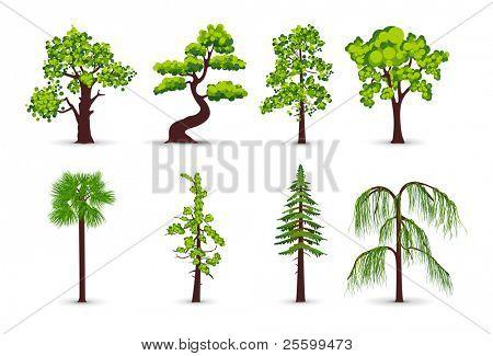 Baum-Symbole