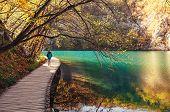 Croatia Nature Park Plitvice Lakes In Autumn - Boy Walks On Bridge Over The Lake poster