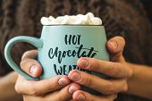 Blue Mug With Coffee, Hot Chocolate Or Cocoa With Marshmallow In Female Hands. Inscription On Cup Ho poster