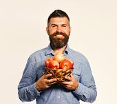 Man With Beard Holds Wicker Bowl With Fruit Isolated On White Background. Guy Presents Homegrown Har poster