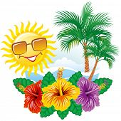 pic of tropical island  - Beautiful vector tropical label width hibiscus - JPG