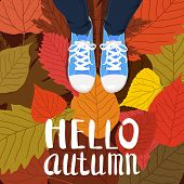Hello Autumn Color Illustration. Person Feet Standing In Sneakers On Yellow, Red, Green Fallen Leave poster