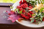 Autumn Fall Flat Lay Composition. Autumn Still Life On Wooden Plate. Colorful Maple Leaves, Rowan Be poster