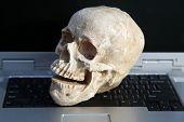 Human Skull on Laptop Computer. Haunted Computer. Haunted Laptop. Halloween Human Skull. Evil Skelet poster