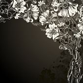 picture of white flower  - black background with decorative flowers - JPG