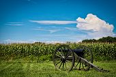 A Canon Sits Near A Corn Field At A Civil War Battlefield In Virginia. poster