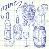 picture of grape-vine  - wine doodles - JPG