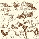 stock photo of farm animals  - original hand drawn farm collection - JPG