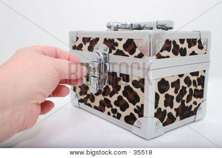 Animal Print Lock Box Over White