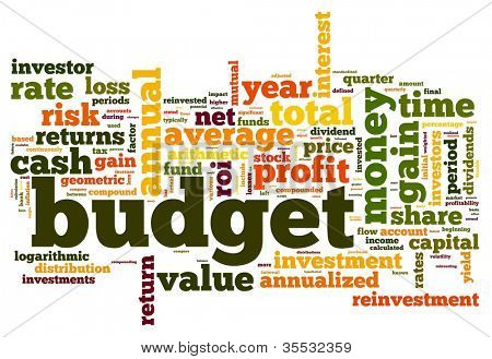 Budget concept in tag cloud on white