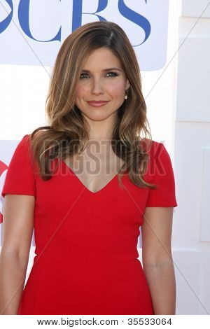 LOS ANGELES - JUL 29:  Sophia Bush arrives at the CBS, CW, and Showtime 2012 Summer TCA party at Beverly Hilton Hotel Adjacent Parking Lot on July 29, 2012 in Beverly Hills, CA