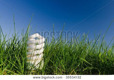energy saving lamp in green field