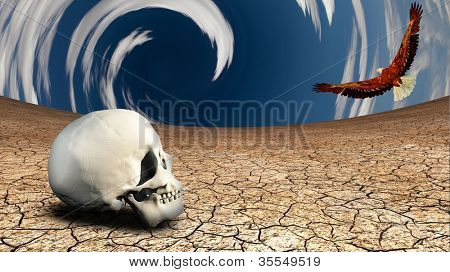 Surreal desert with human skull and eagle in flight