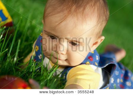 Baby Lying In The Grass