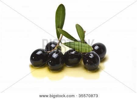 Black Olives Covered In Oil.