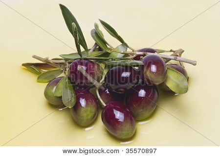 Colorful Olives.