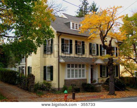 Yellow Stucco House