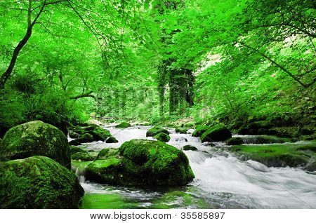 nice mountain stream with green stones