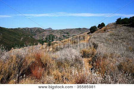 Talepop Trail