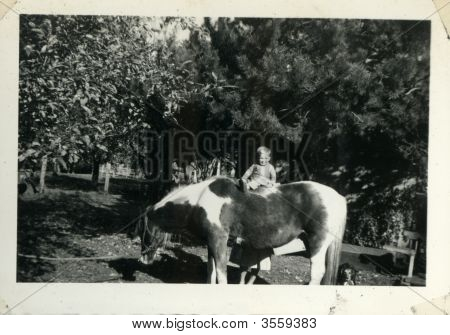 Vintage 1930 Family Photo