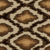 stock photo of pythons  - Seamless python snake skin pattern - JPG