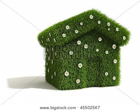 Grass and Flower Covered House