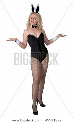 Young Woman In Sexy Bunny Suit On White Background