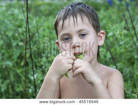 the boy eats green peas