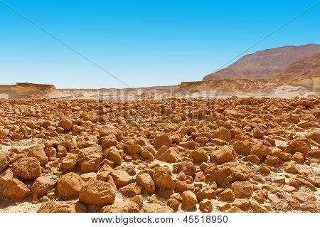 Stones In The Desert